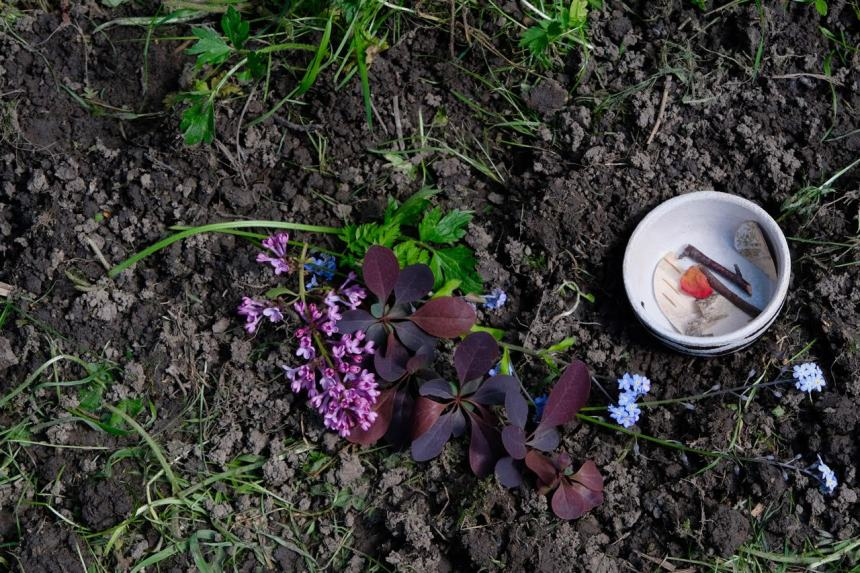 puple leaves and flowers are spread on the bare earth, a small dish sits beside them with small pieces of bark, twig and petals inside. a small altar to the earth by keli tomlin