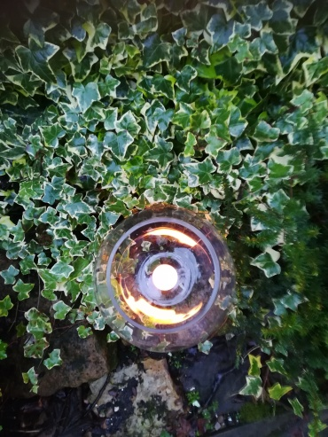 A candle burns at the centre of a glass bowl which is sitting amongst a clump of ivy. The picture is taken from above.